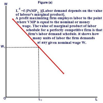 Employment and Output Determination under Classical System-labor demand curve