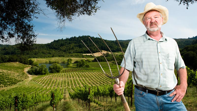 A farmer is standing in a field holding a plantation fork.